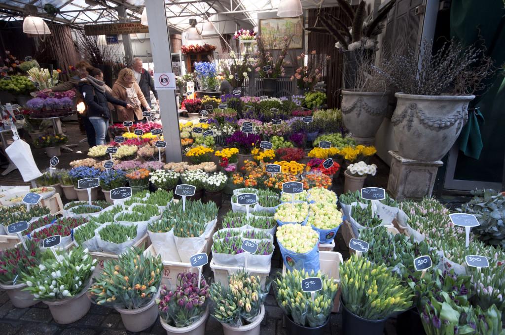 flower market cut flowers