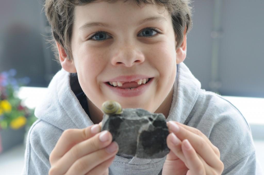 gabe snail