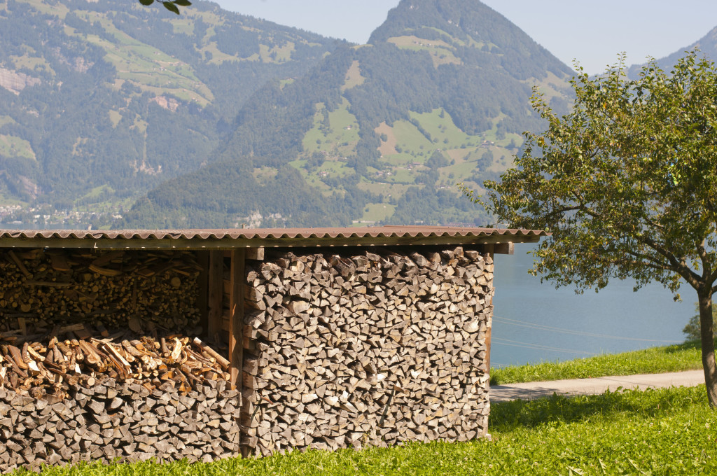 swiss wood pile- OCD_