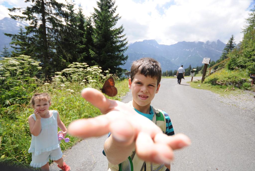 axels butterfly