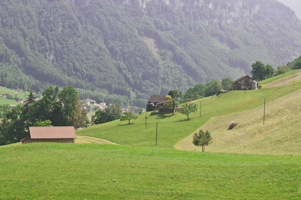 swiss farmer views