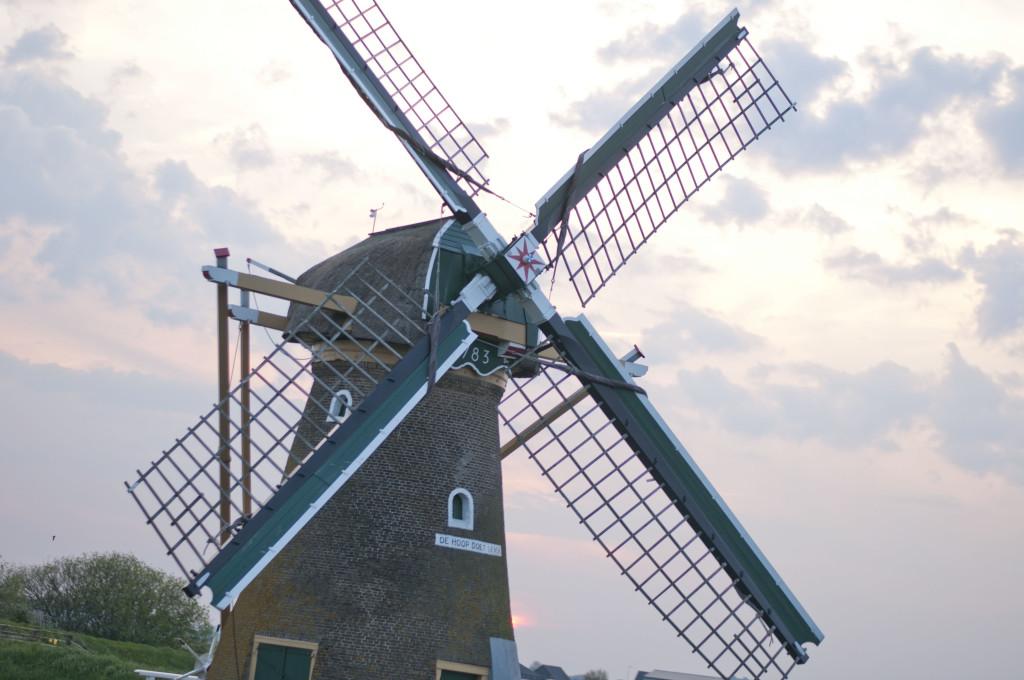 windmills_1